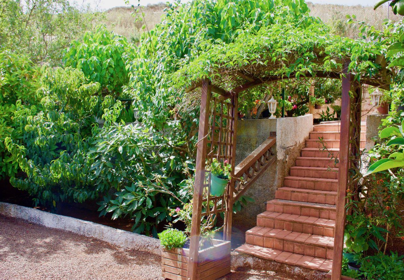 Villa en Vega de San Mateo - Casa Rosa